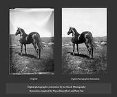Digital Photographic Restorations