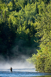 Fly-fishing in the early morning mist on the Androscoggin River just below the dam in Errol, NH.