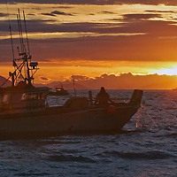 The fishing vessel Bella Donna sets it's gillnet gear in the Gulf of Alaska outside the Copper River Delta. Copper River salmon are a world famous commodity.