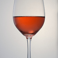 Rose Wine Test Shoot