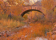Fall Color Surrounds an Old Stone Bridge in Zion National Park Utah