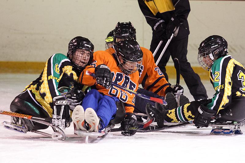 OPRF boys versus Chicago Hornets sled hockey team.