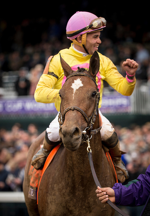 October 31, 2015:  Wavell Avenue with Joel Rosario up wins the Breeders' Cup Filly and Mare Sprint at Keeneland Race Track in Lexington, Kentucky. Evers/ESW/CSM