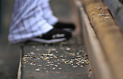 SHOT 4/20/11 3:25:14 PM - Sunflower seed shells litter the floor of the Colorado Rockies dugout during a game against the San Francisco Giants at Coors Field in Denver, Co. The Rockies won the game 10-2 and avoided a sweep in the series after the Giants had taken the first two games. Sunflower seeds and chewing tobacco have long been staples of the game of baseball. (Photo by Marc Piscotty / © 2011)