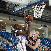 Delaware 87ers Forward Thanasis Antetokounmpo (19) drives towards the basket as Springfield Armor Center Jeff Foote (21) defends in the course of a NBA D-league regular season basketball game between the Delaware 87ers (76ers) and Springfield Armor (Nets) Saturday, Dec. 28, 2013 at The Bob Carpenter Sports Convocation Center, Newark, DE