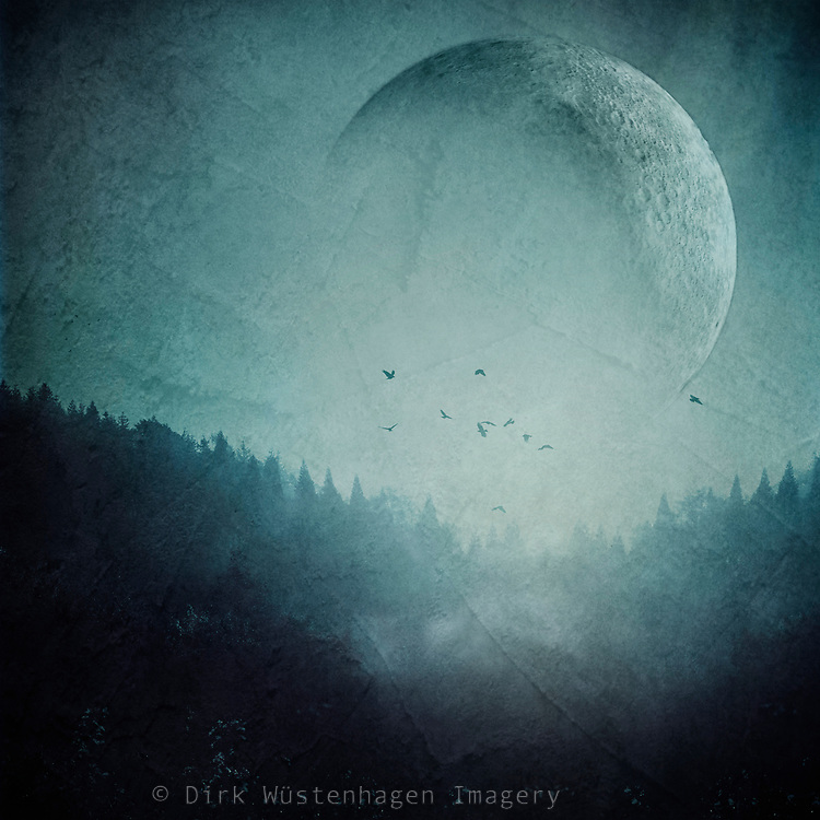 Moon over misty forest - photomanipulation<br />