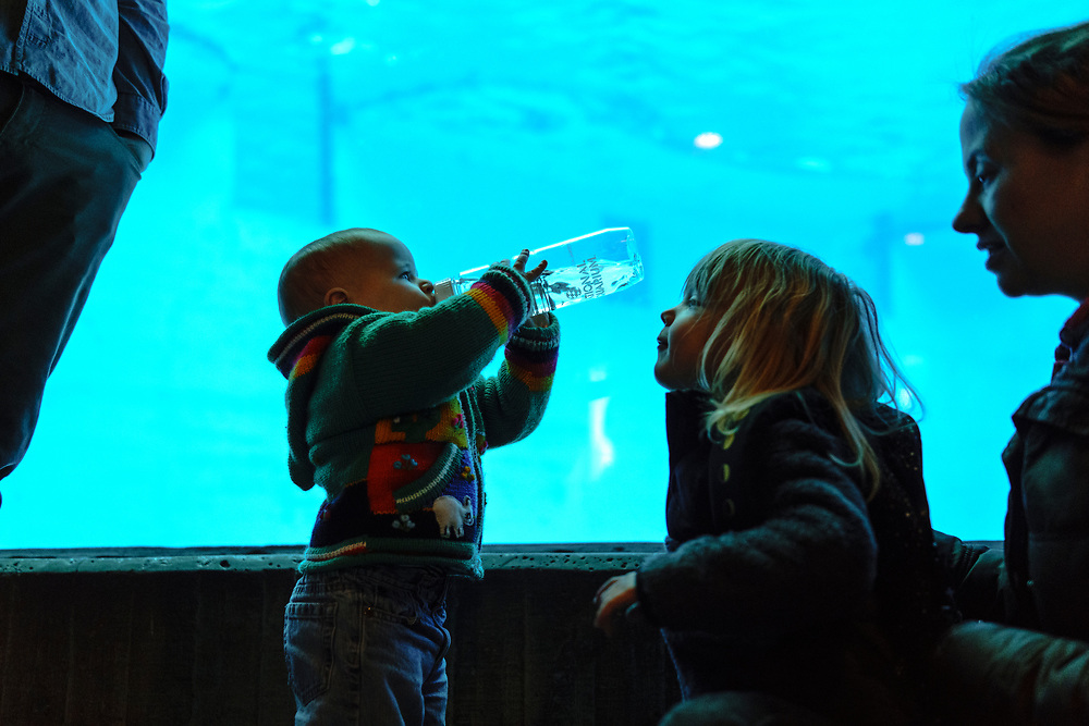 Baltimore, Maryland - February 05, 2017: Trip to The National Aquarium with Sarah, Ben and Margalo.<br /> <br /> CREDIT: Matt Roth