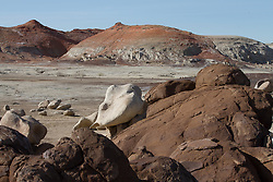 https://www.blm.gov/nm/st/en/prog/blm_special_areas/wilderness_and_wsas/wilderness_areas/bisti.html