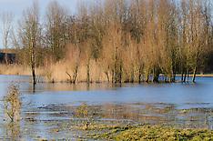 Horsterwold, Zeewolde, Flevoland, Netherlands
