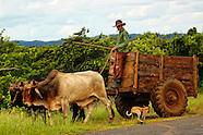 Pinar del Rio towns and countryside, Cuba.