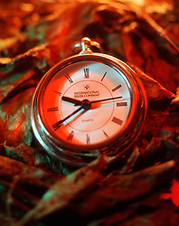 A silver clock sits atop fall leafs