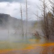 Upper Terrace Overlook - Mammoth Terrace Hot Springs - Yellowstone National Park