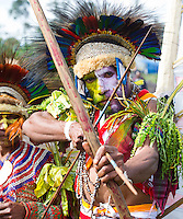 Portrait of a man from the Bena tribe pointing a bow and arrow. He is dressed in traditional tribal outfit for the Goroka Show, an annual festival in the Papua New Guinea Highlands