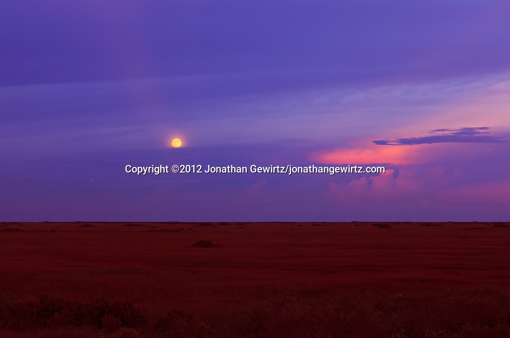 The full Moon rises above clouds over sawgrass prairie in the Shark Valley section of Everglades National Park, Florida.