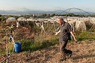 09 July 2016, Lamezia Terme Italy - Don Giacomo Panizza, Comunità Progetto Sud, inside a field burned by ndgrangheta.