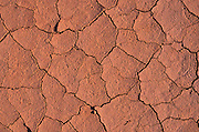 Detail of parched soil, Capitol Reef National Park, Utah