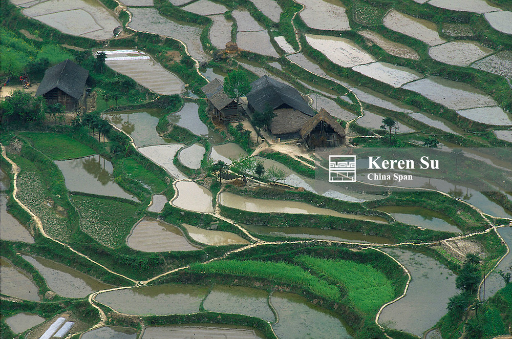Landscape of water filled rice terraces and village houses, Hunan Province, China