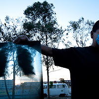 29 April 2009, Mexico City, Mexico--- A man shows and X rayof his lung after leaving the Gustaro Baz Prada Hospital in Neza in Mexico State --- Image by © Trevor Snapp