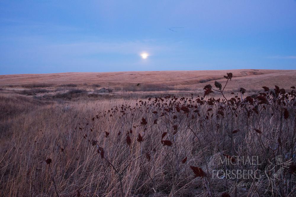 Nebraska<br /> -Audubon Spring Creek Prairie<br /> -tallgrass prairie sunset<br /> -Moonrise and tallgrass prairie<br /> -Canada geese in flight over prairie
