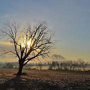 Ohio Sunny morn