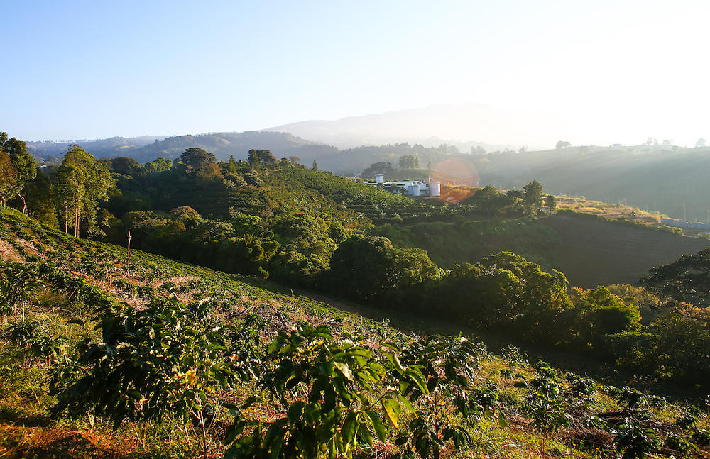 The Hacienda Alsacia farm and coffee mill is shown during the 2016 Starbucks Origin Experience for Partners. Photographed in January 2016. (Joshua Trujillo, Starbucks)