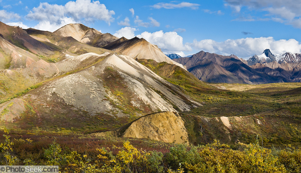 See the Alaska Range from Sable Pass on the Park Road in Denali National Park, Alaska, USA. Panorama stitched from 2 overlapping photos.