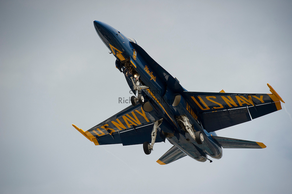 2011 August 02 - A U.S. Navy Blue Angels F/A-18  Hornet on landing approach at Boeing Field in Seattle, WA, USA. Photo by Richard Walker