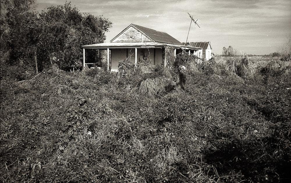 Abandoned Home, Pilottown, LA