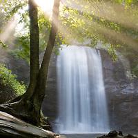 Looking glass water falls at sunrise in North Carolina