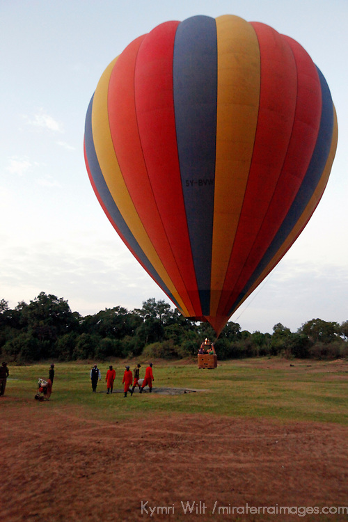 Africa, Kenya, Maasai Mara. Hot-Air Ballooning landing in the Maasai Mara.