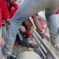 Gustavo Silva prepares to ride a bull at the Barretos na America rodeo at the Brockton Fairgrounds, Sunday,  May 24, 2009.