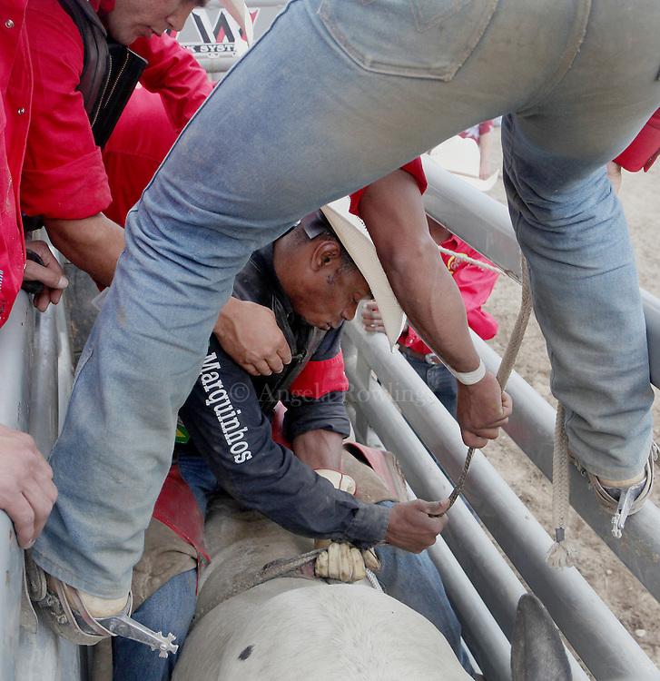 Gustavo Silva prepares to ride a bull at the Barretos na America rodeo at the Brockton Fairgrounds, Sunday,  May 24, 2009.