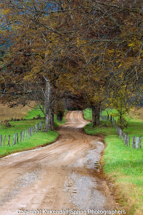 TN00024-00...TENNESSEE - Hyatt Lane in Cades Cove, Great Smoky Mountains National Park.