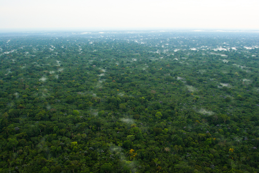 27/10/05 Aerials of the Flona de Tapajos and Belterra aerea with soy plantations and deforestation..©Daniel Beltra