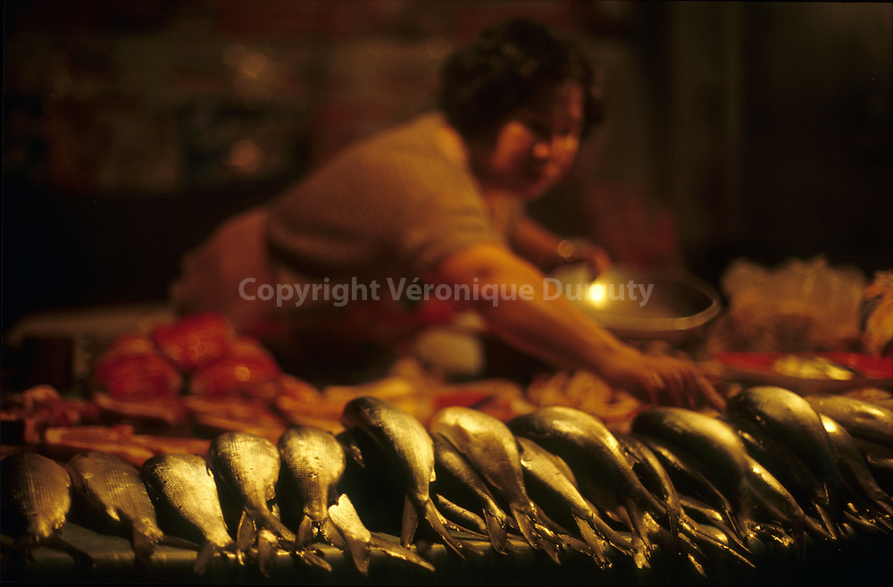 NIGHT FISH MARKET IN LUZON ISLAND, THE PHILIPPINES