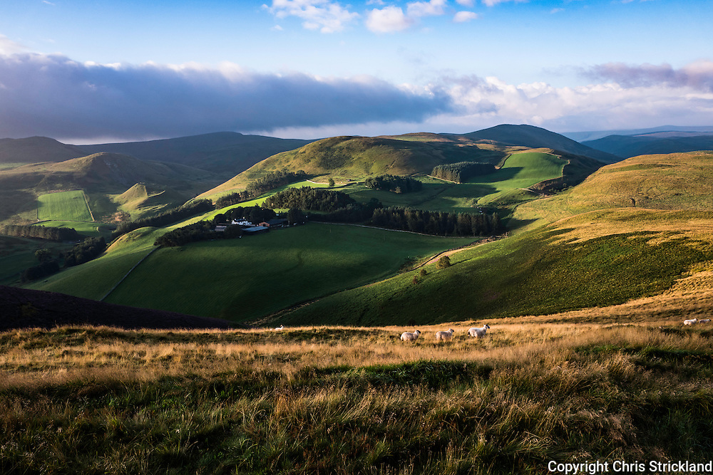 Buchtrig, Hownam, Jedburgh, Scottish Borders, UK. 26th August 2016. The sun rises behind the Cheviot Hills and the Anglo Scot Border casting light and shadows across Buchtrig farm viewed from Humblemoor near Hownam. © Chris Strickland / Alamy Live News