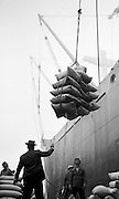 Dock workers unloading cargo ship with cranes on San Francisco docks