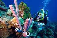 Diving in Curacao, Netherlands Antilles