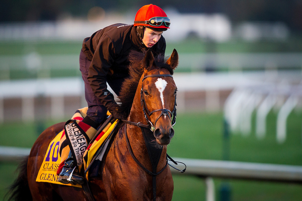 October 29, 2015:  Gleneagles (IRE), trained by Aidan P. O'Brien and owned by Michael Tabor , Mrs. John Magnier & Derrick Smith, exercises in preparation for the Breeders' Cup Classic at Keeneland Race Track in Lexington, Kentucky. Alex Evers/ESW/CSM
