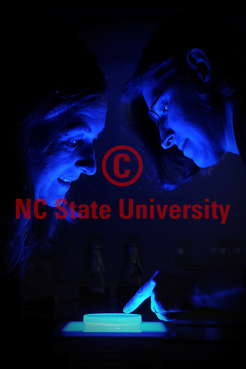 Heike Sederoff (left) and Amy Grunden look over algae samples with a blue light.