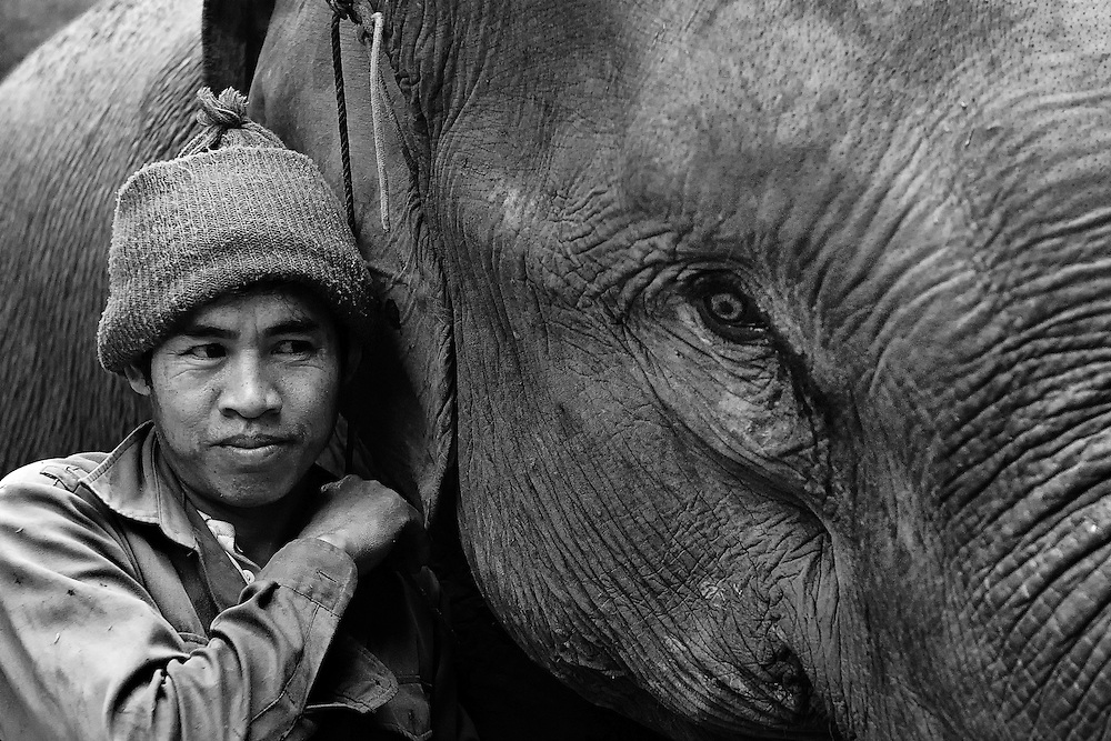 A mahout with his elephant in Pak Beng, Laos.
