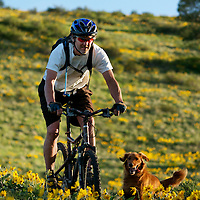 bicycle rider in flowers with dog