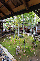 """Myokenji Bamboo Garden is a small, rectangular courtyard garden composed of bamboo which regrows every year.  The composition is said to have been based on a scoll painting """"Sho Chiku Bai Zu"""" by Kohrin Ogata.  This garden has appeared in Nescafe commercials for its freshness."""