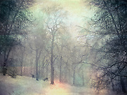 Snowy landscape. Textured and colored photography<br />