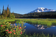 Mount Rainier and Reflection Lake; Mount Rainier National Park, Washington.