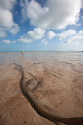 Drainage channels exposed in the mud flats at Broome's Town Beach on the shores of Roebuck Bay.  At low tide, vast expanses of mud flats expose the rich benthos of this eco-system.