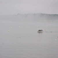 Small lobsterman's boat brings lobster pots into calm Southwest Harbor, in thick mist.
