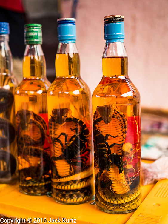 """11 MARCH 2016 - LUANG PRABANG, LAOS:  Fortified """"Lao Lao,"""" a Lao rice whiskey, for sale in the handicraft market in Luang Prabang. It is fortified with dead cobras and scorpions. Luang Prabang was named a UNESCO World Heritage Site in 1995. The move saved the city's colonial architecture but the explosion of mass tourism has taken a toll on the city's soul. According to one recent study, a small plot of land that sold for $8,000 three years ago now goes for $120,000. Many longtime residents are selling their homes and moving to small developments around the city. The old homes are then converted to guesthouses, restaurants and spas. The city is famous for the morning """"tak bat,"""" or monks' morning alms rounds. Every morning hundreds of Buddhist monks come out before dawn and walk in a silent procession through the city accepting alms from residents. Now, most of the people presenting alms to the monks are tourists, since so many Lao people have moved outside of the city center. About 50,000 people are thought to live in the Luang Prabang area, the city received more than 530,000 tourists in 2014.      PHOTO BY JACK KURTZ"""