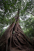 Sri Lanka - Ritigala
