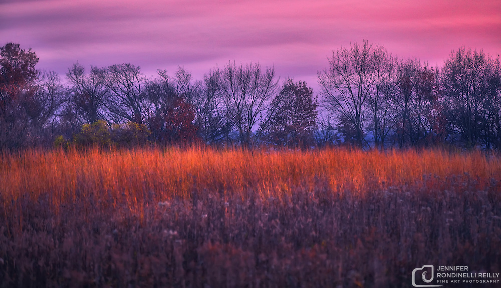 November sunset and prairie at Retzer Nature Center in Waukesha,WI.